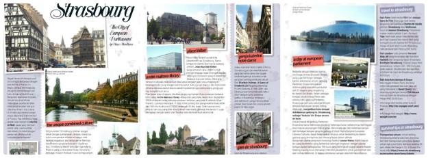 strasbourg article - Dina Mardiana