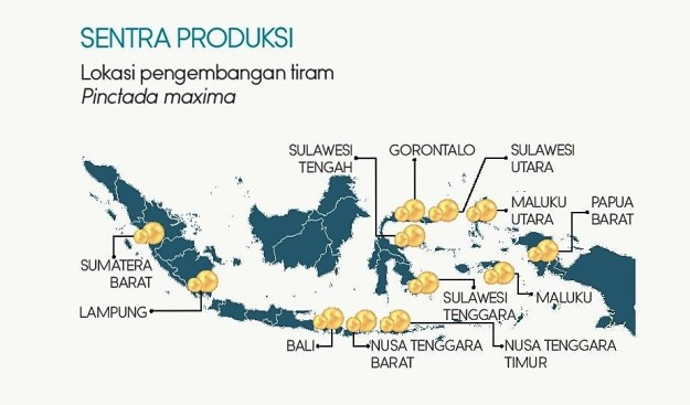 Lokasi pengembangan tiram Pinctada maxima penghasil South Sea Pearl di Indonesia. (sumber: dokumen KKP)
