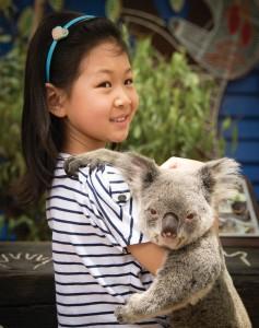 berfoto bareng Koala di Dreamworld. (foto: dok. TEQ)